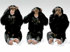 the-3-monkeys.jpg